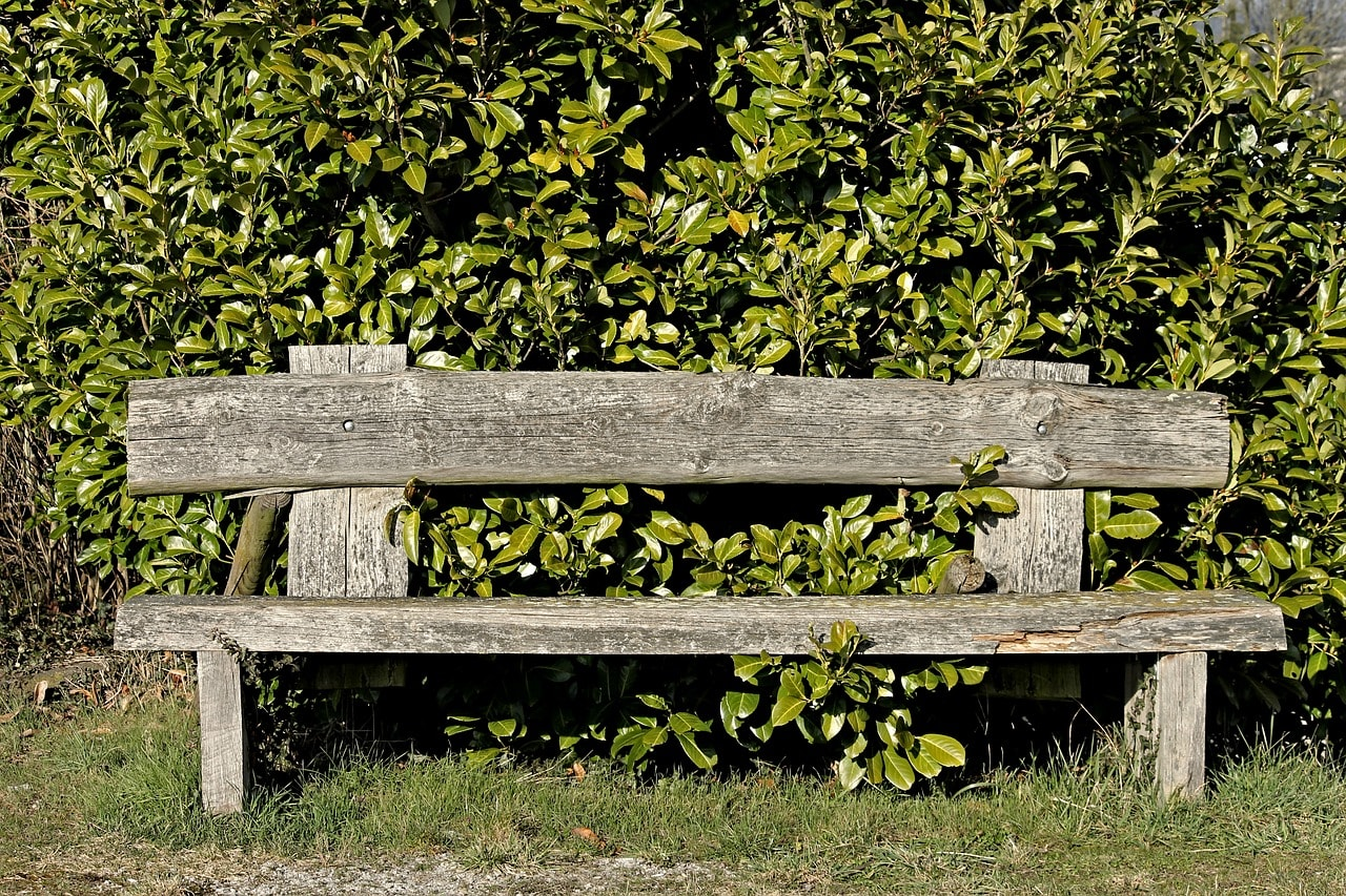 Jak zrobić drewniane ławki ogrodowe