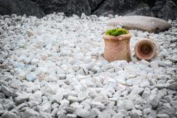 Jak ozdobić ogród kamieniami?