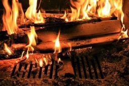 Palenisko ogrodowe – smak pieczonej kiełbaski